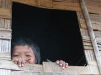 Janela de bambu